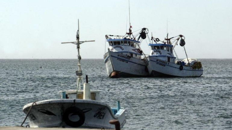 Anchovy fishing held up by young populations