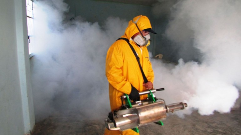 Spike in dengue fever prompts state of emergency in Piura