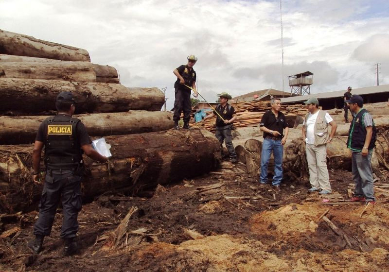 1,000 special police to combat illegal logging