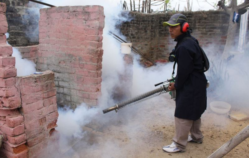Piura struggles against dengue fever epidemic