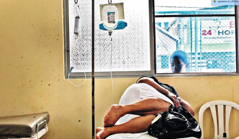 Dengue declines in northern Peru ahead of El Niño rains