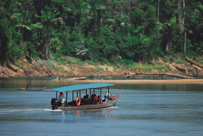 40 tourists kidnapped, then released in Peru's Amazon