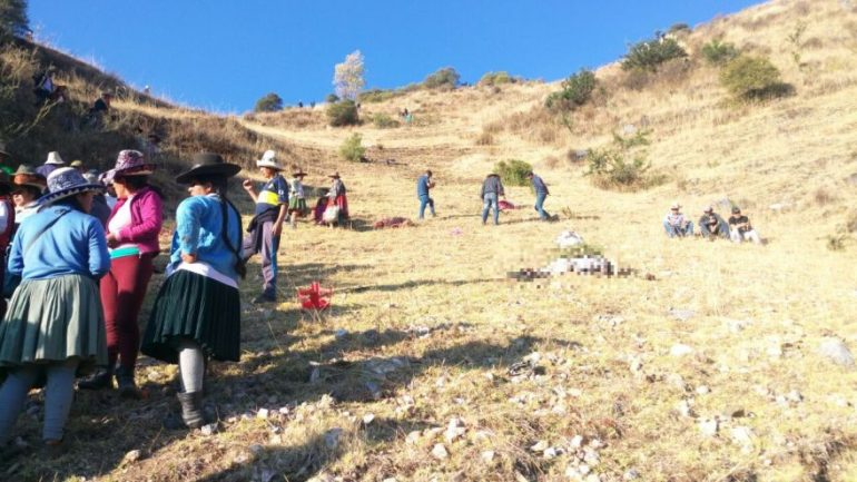 At least 11 dead in southern Peru bus accident