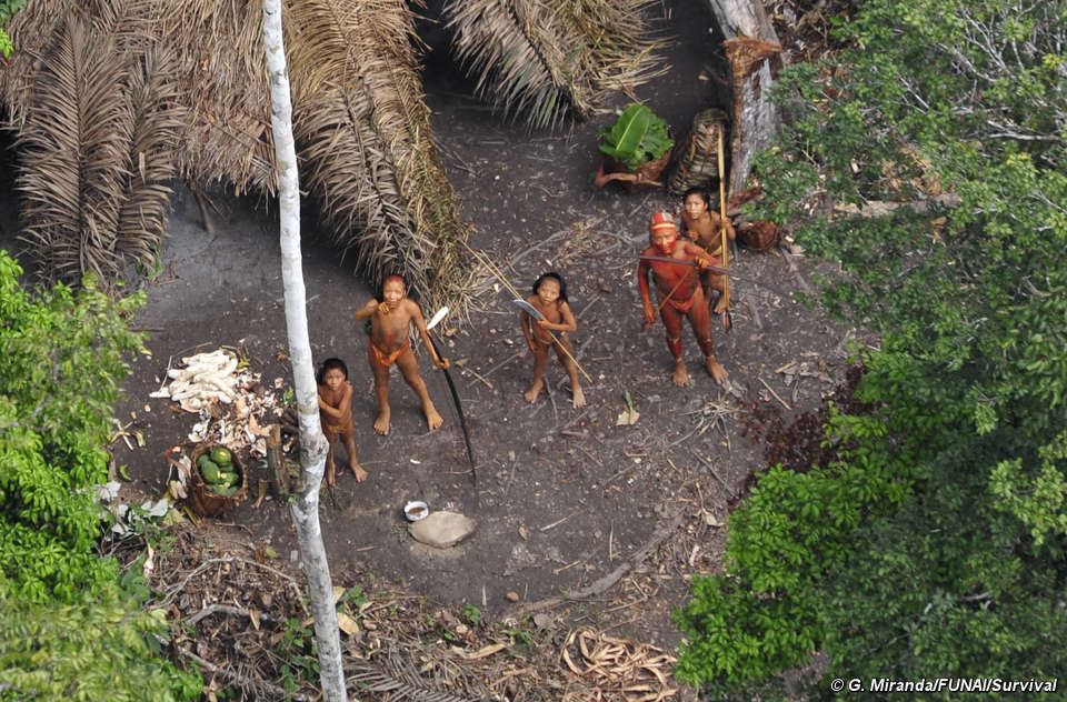 Proposed reserves will protect Peru's indigenous tribes in the Amazon