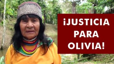 Indigenous leader shot to death outside her home in Ucayali