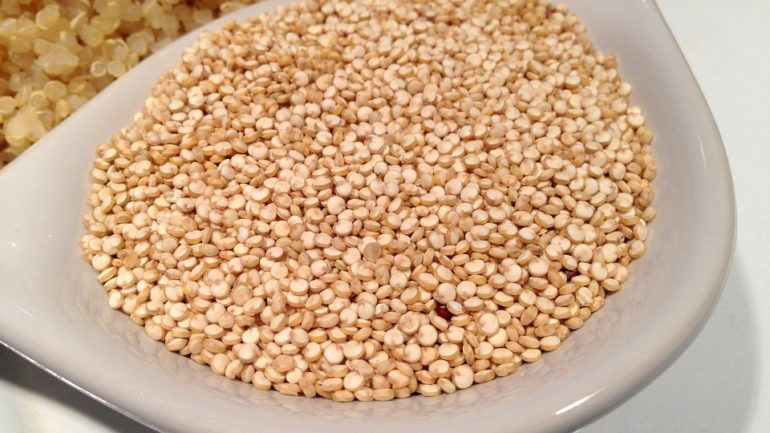 Peru develops new types of quinoa resistant to drought and plagues