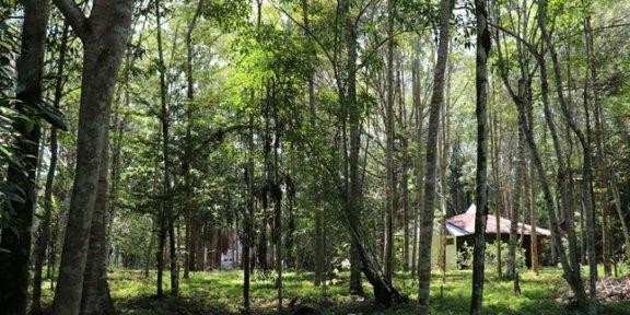 peru bio-park