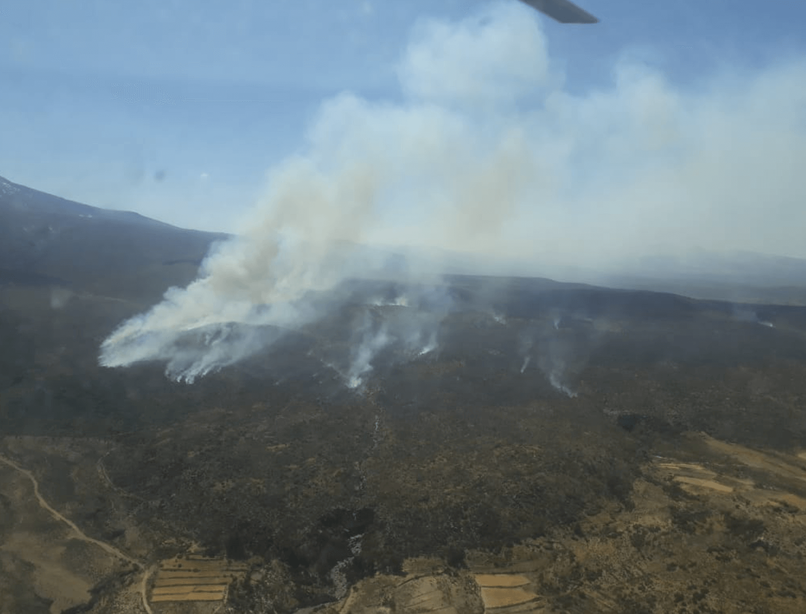 Authorities race to fight forest fire in Southern Peru